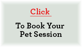 Book Your Pet Session